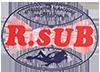 R Sub